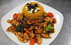 Sweet Onion Teriyaki Chicken